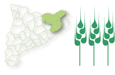 Zona Girona Interior