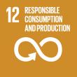 SDG_12