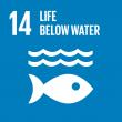 SDG_14